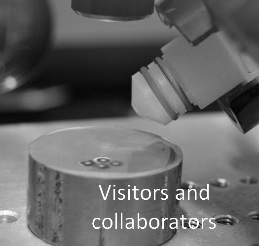 Visitors & Collaborators